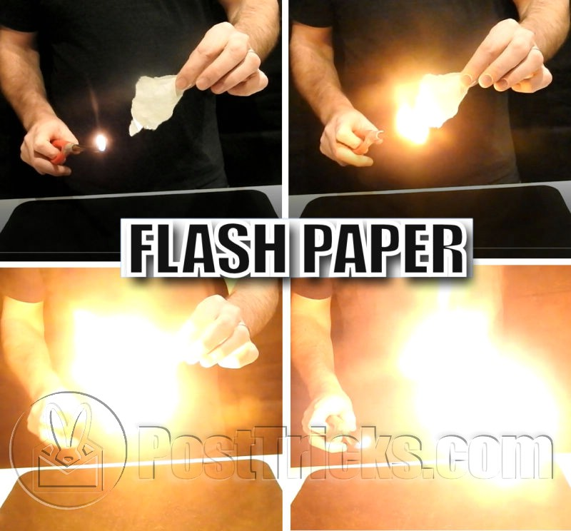 flash paper Download macromedia flashpaper 201 turn any of your files into flash or pdf files with ease.