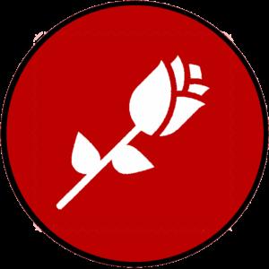 Flower Magic